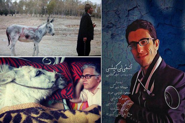 در جشنواره منطقهای «شبدیز»: حیوانات در نقش اول فیلمها