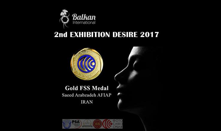 مدال طلای جشنواره عکس صربستان به عربزاده رسید