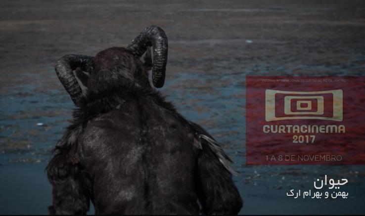 جایزه بهترین کارگردانی جشنواره curta cinema به فیلم کوتاه «حیوان» رسید