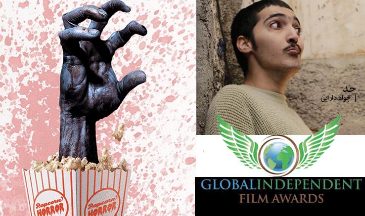 ۳ جایزه جهانی دیگر برای جواد دارایی
