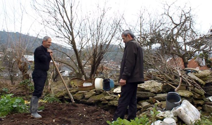 تولید «درخت مشترک » در انجمن سینمای جوان لاهیجان