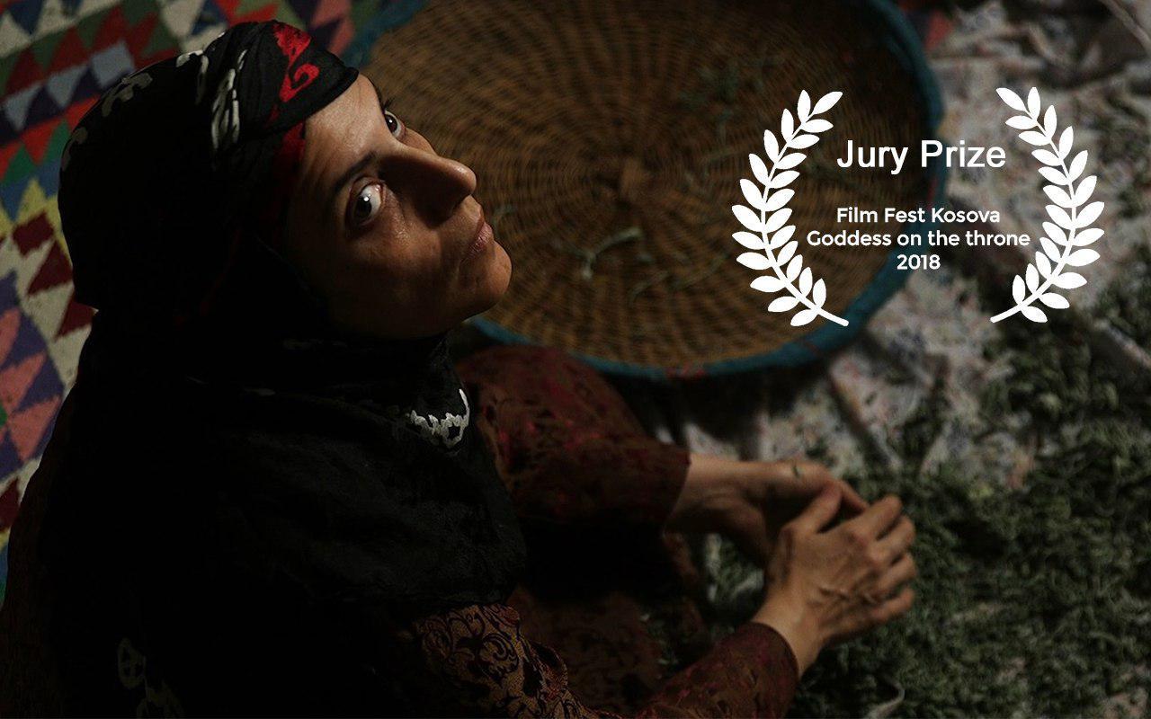 «فروزان» برنده جایزه ویژه هیأت داوران جشنواره کوزوو