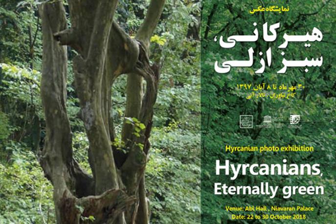 پوستر نمایشگاه عکس «ثبت جهانی جنگلهای هیرکانی» رونمایی شد