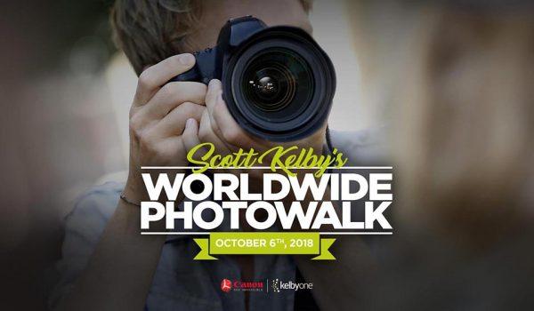 درخشش عکاسان مشهدی در یک رویداد جهانی