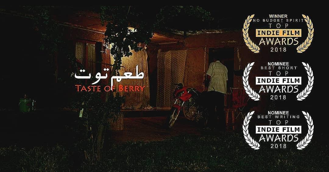 «طعم توت» ایرانی از آمریکا جایزه گرفت