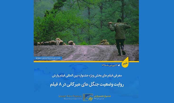 فیلمهای منتخب بخش ویژه نهمین جشنواره بینالمللی فیلم وارش معرفی شدند/ روایت وضعیت جنگل های هیرکانی در ۸ فیلم