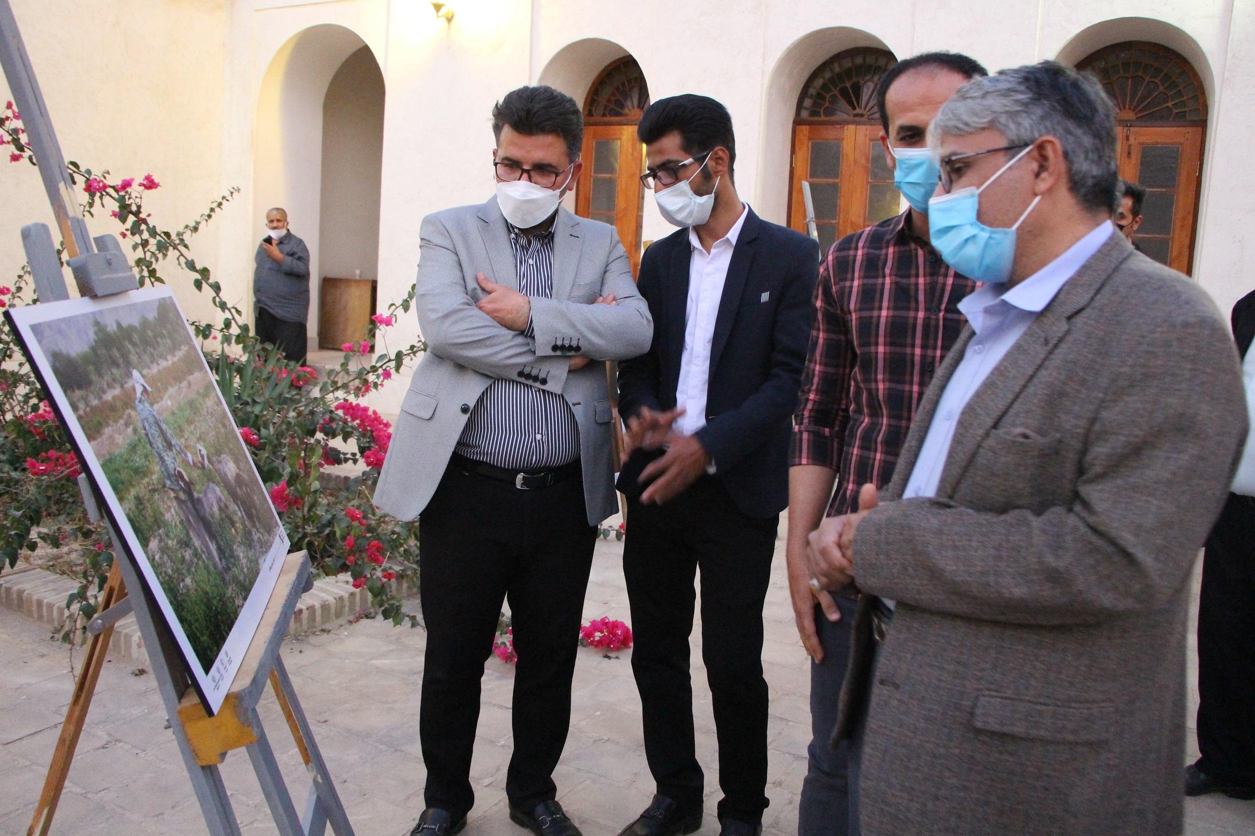 گشایش نمایشگاه «20» در تنگستان