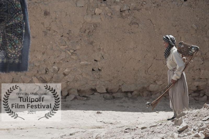 رقابت مستند داستانی «یک شعر تنها» در جشنواره بین المللی Tulipoff دانمارک
